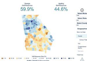 Georgia response rate, census