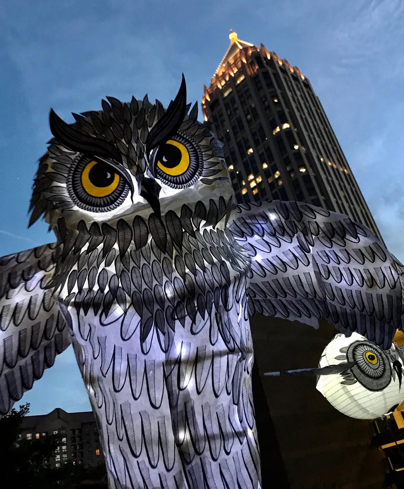 OwlLanterns2019_25