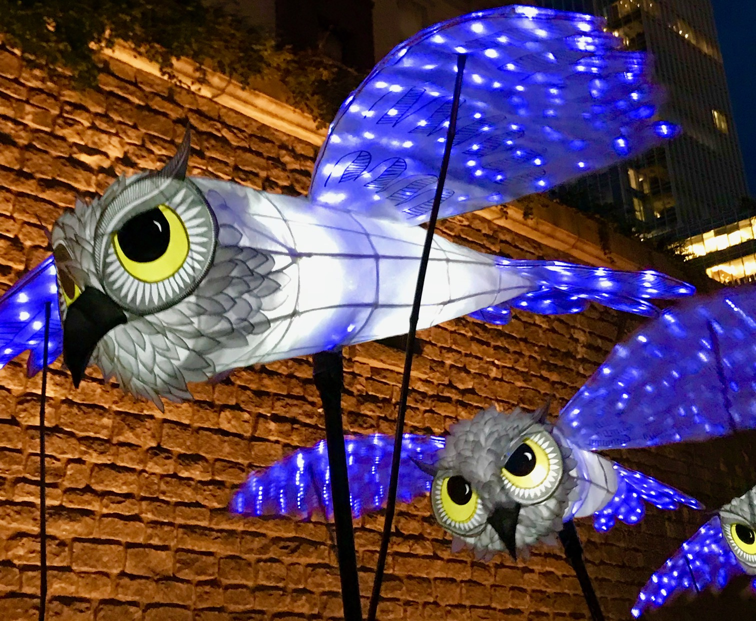 OwlLanterns2019_27