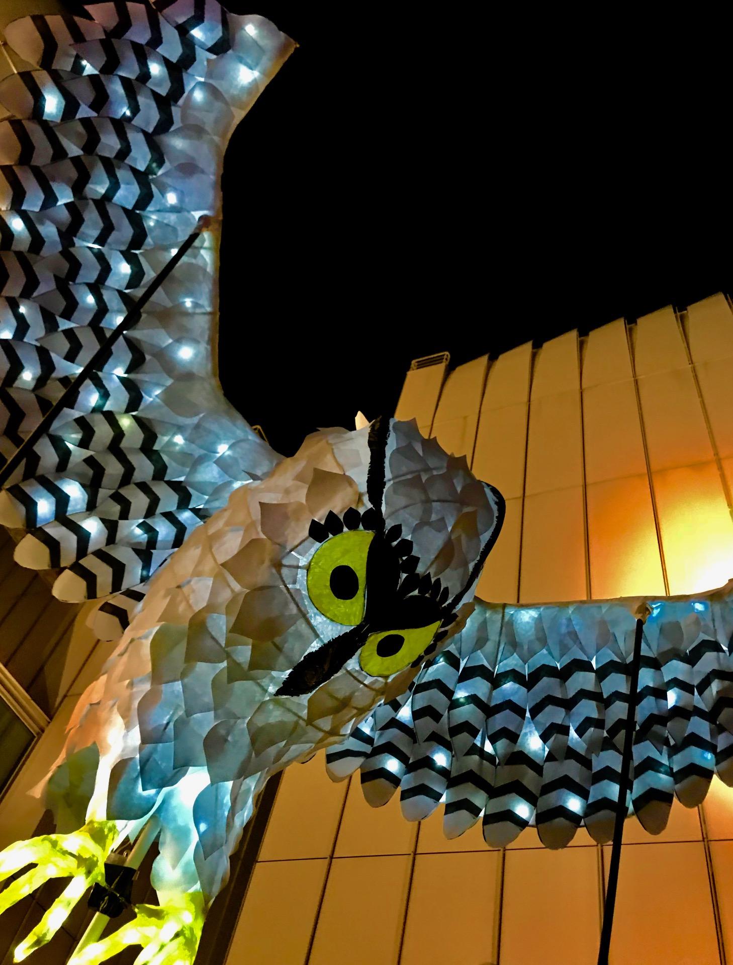 OwlLanterns2019_30