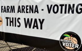 State Farm Arena, voting, polling copy