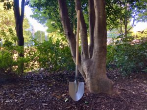 mercedes benz tree, shovel