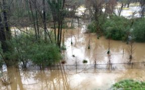 A December 2015 file photo shows a major flood near Bobby Jones Golf Course in Buckhead. (File/Credit: Trina Jackson)