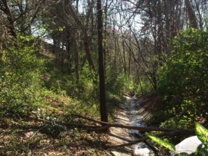 Piedmont Road, undevelopable land