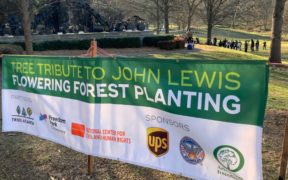 John Lewis Freedom Park trees Atlanta 2021 sign