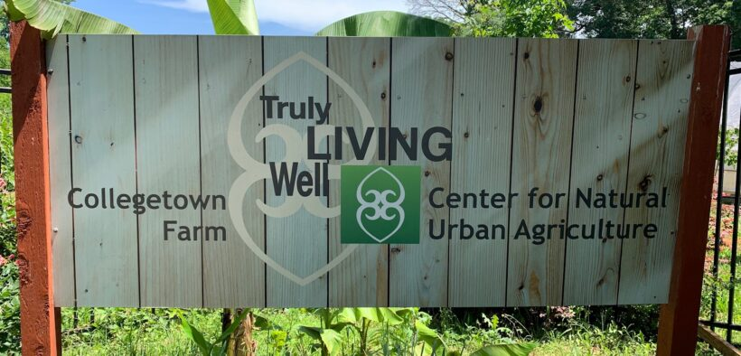 Soil Festival Food Well Alliance Truly Living Well 2021