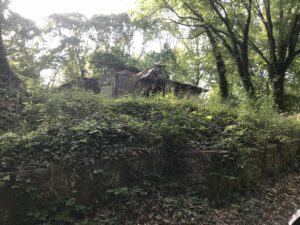 Carey Park, decay