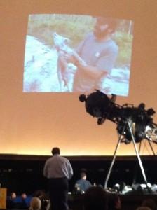 Coyote presentation at Fernbank Science Center